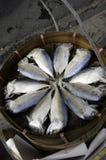 Mackerel. Fish lying in a bamboo basket Stock Photos