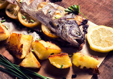 Mackerel fish prepared Stock Photos
