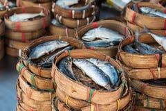 Mackerel fish. Sale in asia local market Royalty Free Stock Photo