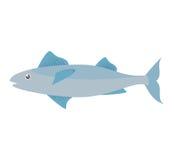 Mackerel fish sea life design icon Royalty Free Stock Image