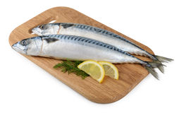 Mackerel fish on wooden plate isolated Royalty Free Stock Image
