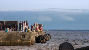 Mackerel fishing int the harbor of Angra do Heroismo, Azores, Macic Lantern RAW video stock footage