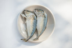 Mackerel fishs. Mackerel and fresh vegetables ingredients for cooking Royalty Free Stock Photography