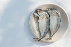 Mackerel fishs. Mackerel and fresh vegetables ingredients for cooking copy space Royalty Free Stock Photography