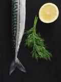 Mackerel. Fresh Mackerel with Dill and Lemon. Selective Focus Royalty Free Stock Image