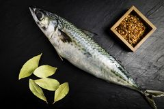 Mackerel fresh fish with some laurel leaves and some spices on a black slate table. Mackerel fresh fish next to some laurel leaves and spices on a black slate royalty free stock photos