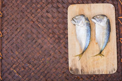 Mackerel and fresh vegetables ingredients Royalty Free Stock Photography