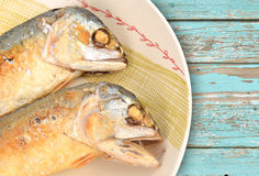 Mackerel fried on a dish Royalty Free Stock Image