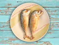 Mackerel fried on a dish Stock Images