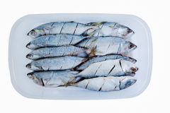 Mackerel frozen food boxes with cooking Royalty Free Stock Photos