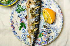 Mackerel - a grill with a lemon and sauce Stock Photos