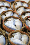 Mackerel i korg Arkivfoto