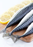 Mackerel with lemon Royalty Free Stock Photography