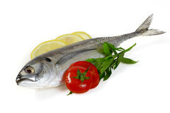 Mackerel with Lemon and Tomatoes. Isolated in white background Royalty Free Stock Images