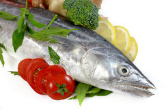 Mackerel with Lemon and Tomatoes Stock Photos