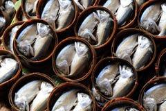 Mackerel. Many Mackerel in Bamboo Basket Stock Photo