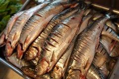 Mackerel Stock Photo
