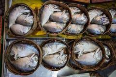 Mackerel. More Mackerel fish in market Thailand Stock Images