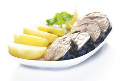 Mackerel and potatoes. Pieces of mackerel and potatoes in a white plate on a white background Stock Images