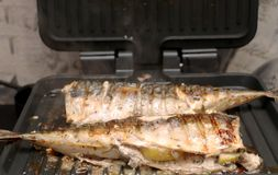 Mackerel is roasted on an electric grill. Grilled fish with lemon and salad stock photography