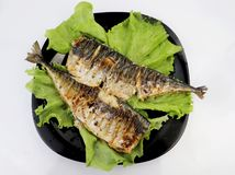 Mackerel is roasted on an electric grill. Grilled fish with lemon and salad stock image