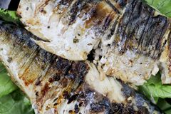 Mackerel is roasted on an electric grill. Grilled fish with lemon and salad royalty free stock photos
