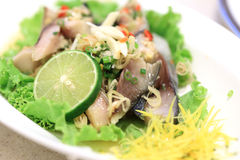 Mackerel Salad Royalty Free Stock Photos