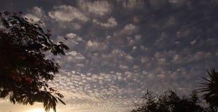 Mackerel Sky at Dusk. Cumulous cloud at dusk (mackerel sky Royalty Free Stock Photography