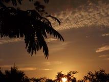 Mackerel Sky at Dusk. Cumulous cloud at dusk (mackerel sky Royalty Free Stock Image