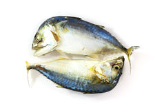 Mackerel steamed isolated. For food background Royalty Free Stock Photos