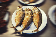 Mackerel steamed royalty free stock photography