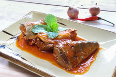 Mackerel in tomato sauce on plate Stock Photography