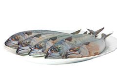 Mackerels Royalty Free Stock Image