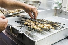 Mackerels in grate just taken out of barbecue fire stock image