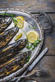 Mackerels on silver plate Royalty Free Stock Image