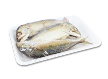 Mackerels steamed in a pack on white background Royalty Free Stock Images