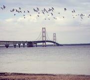 Mackinac most przy zmierzchem Zdjęcie Royalty Free