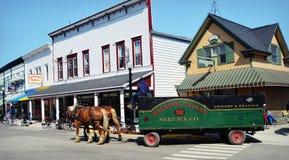 Mackinac wyspy Stagecoach zdjęcie stock