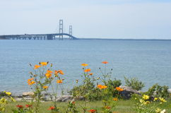 Mackinaw Bridge and Flowers Royalty Free Stock Images