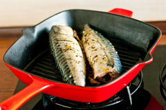 Mackrel cooked on grill pan Stock Images