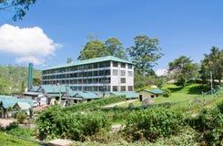 Mackwoods labookellie tea factory and tea centre. At labookellie, Sri Lanka Royalty Free Stock Photography