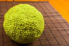 maclura pomifera,哇洒琪橘,马苹果,喉绿色果子在竹席子增长 图库摄影