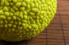 maclura pomifera,哇洒琪橘,马苹果,喉绿色果子在竹席子增长 库存照片