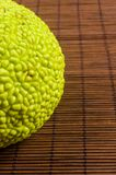 maclura pomifera,哇洒琪橘,马苹果,喉绿色果子在竹席子增长 免版税图库摄影