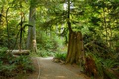 Macmillan prowincjonału park zdjęcia stock