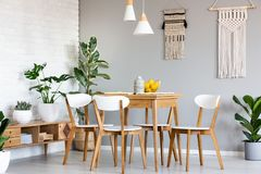 Macrame hanging on gray wall above wooden table and chairs in br. Ight dining room interior with lots of plants. Real photo royalty free stock photography