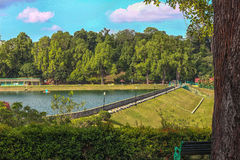 MacRitchie Reservoir royalty free stock images