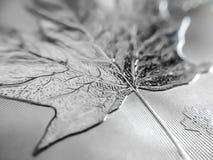 Macro étroit d'une pièce de monnaie pure d'argent en lingot images stock