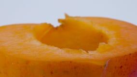 Macro étroit superbe d'un demi- de fruit d'abricot Rotation sur la plaque tournante D'isolement sur le fond blanc clips vidéos