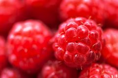 Macro abstract view of fresh raspberries Stock Image